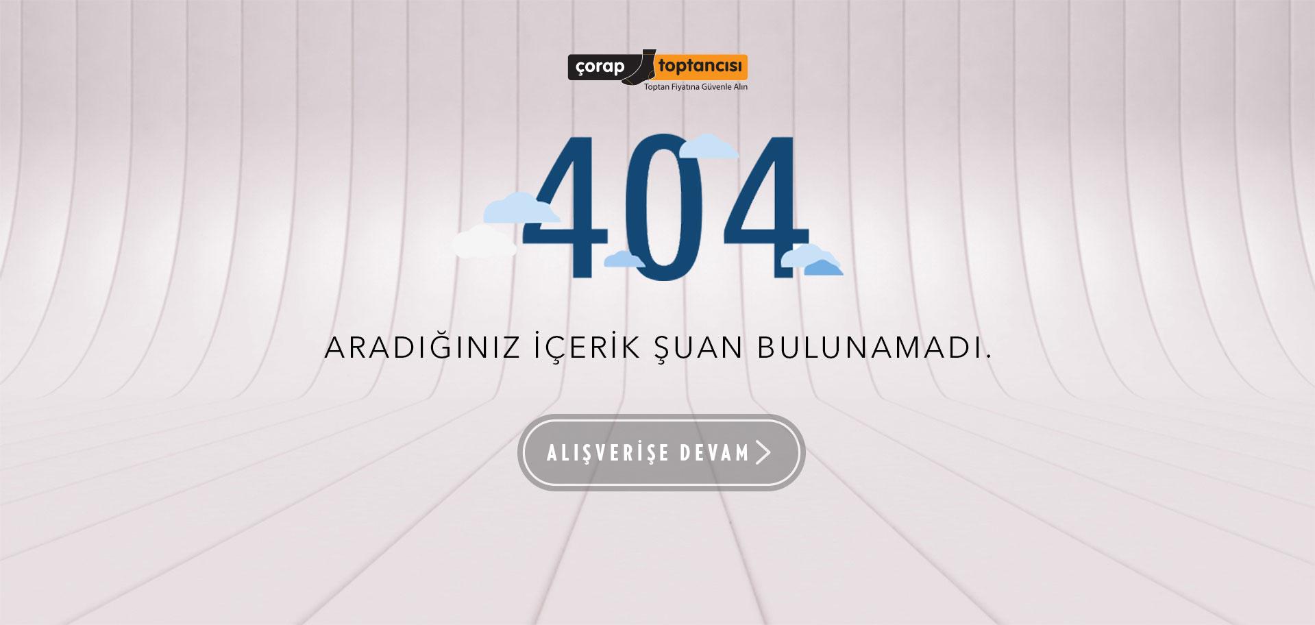 404 Sayfası